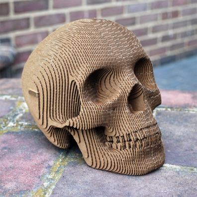 cardboard_safari_vince_skull_1